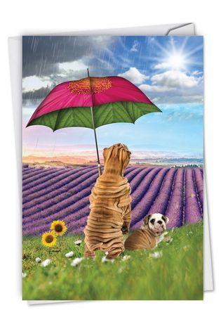 Creative Get Well Printed Greeting Card From NobleWorksCards.com - Raining Dogs - Sunny Days