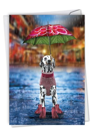 Stylish Miss You Card From NobleWorksCards.com - Raining Dogs - Alone