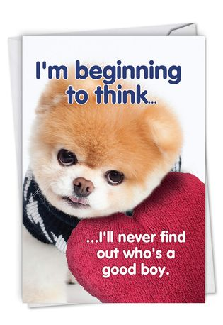 Hysterical Birthday Printed Card By Spotlight Licensing From NobleWorksCards.com - Boo's A Good Boy