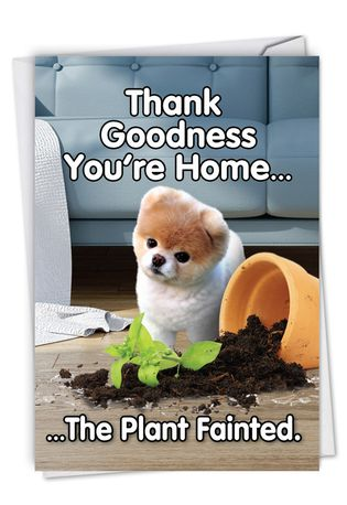 Funny Birthday Paper Greeting Card By Spotlight Licensing From NobleWorksCards.com - Boo's Plant Fainted