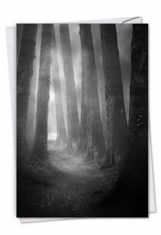 Creative Sympathy Printed Greeting Card From NobleWorksCards.com - Misty Woods