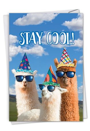 Hysterical Birthday Printed Greeting Card From NobleWorksCards.com - Cool Llamas - Partygoers