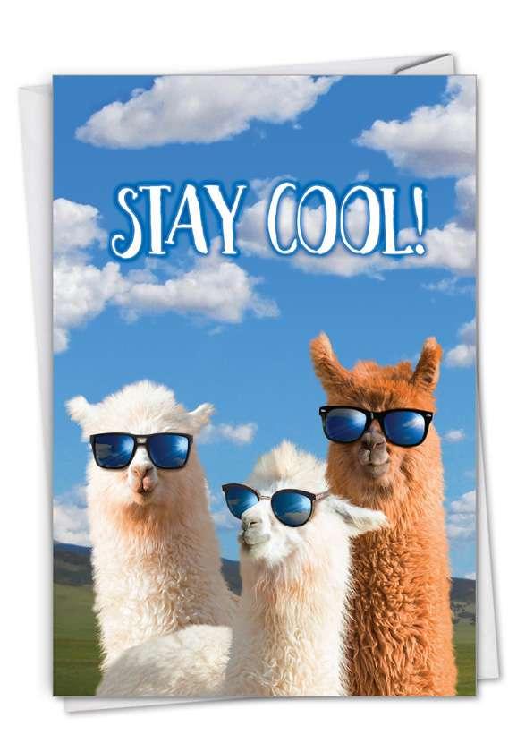 Funny Congratulations Card From NobleWorksCards.com - Cool Llamas - Congrats