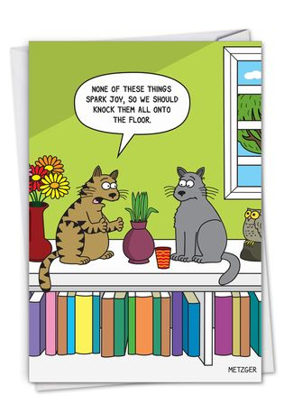 Humorous Birthday Paper Card By Scott Metzger From NobleWorksCards.com - Cat Spark Joy