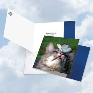 Creative Birthday Square Paper Greeting Card from NobleWorksCards.com - On The Nose Tuxedo Cat