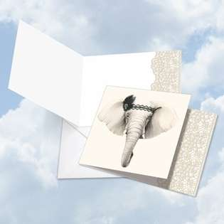 Creative Blank Square Printed Card by World Art Group from NobleWorksCards.com - Wildlife Glamour Elephant
