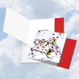 Stylish Christmas Square Paper Greeting Card from NobleWorksCards.com - Christmas for the Birds