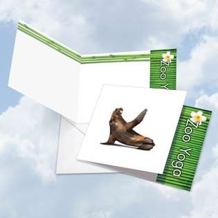 Creative Blank Square Paper Card by Willow Creek Press from NobleWorksCards.com - Zoo Yoga - Seal