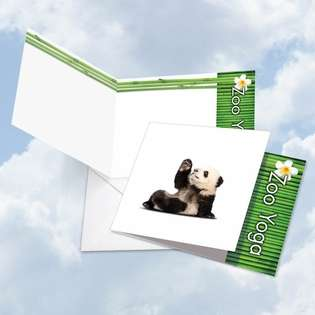 Stylish Blank Square Greeting Card by Willow Creek Press from NobleWorksCards.com - Zoo Yoga - Panda