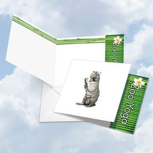 Stylish Blank Square Paper Greeting Card by Willow Creek Press from NobleWorksCards.com - Zoo Yoga - White Tiger