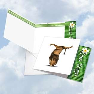 Creative Blank Square Greeting Card by Willow Creek Press from NobleWorksCards.com - Zoo Yoga - Lion