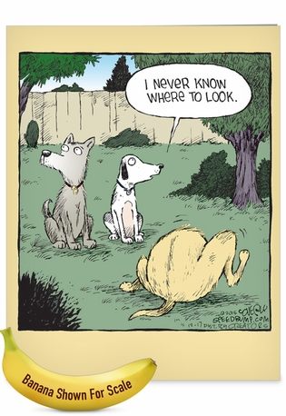 Funny Birthday Jumbo Paper Card By Dave Coverly From NobleWorksCards.com - Look Away