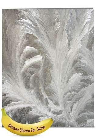 Creative Christmas Jumbo Paper Card from NobleWorksCards.com - Ice Feathers