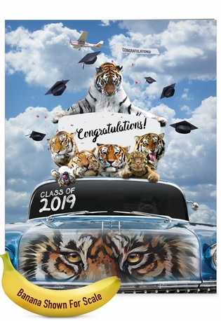 Stylish Graduation Jumbo Paper Card From NobleWorksCards.com - Tigers Mascot - 2019