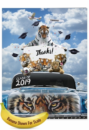 Creative Graduation Thank You Jumbo Printed Card From NobleWorksCards.com - Tigers Mascot - 2019