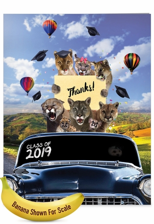 Stylish Graduation Thank You Jumbo Paper Greeting Card From NobleWorksCards.com - Cougar Mascot - 2019