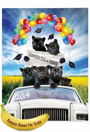 Creative Graduation Jumbo Printed Greeting Card From NobleWorksCards.com - Panther Mascot - 2019