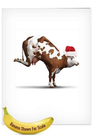 Creative Christmas Jumbo Printed Card by Willow Creek Press from NobleWorksCards.com - Holiday Bovine Nirvana