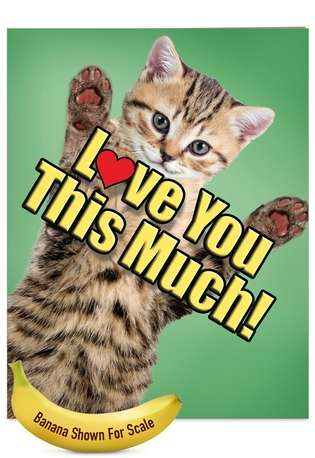 Creative Father's Day Jumbo Greeting Card from NobleWorksCards.com - Cat Love You This Much