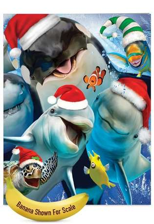 Stylish Christmas Jumbo Printed Card by Howard Robinson from NobleWorksCards.com - Merry Christmas to Zoo