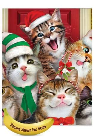 Stylish Christmas Jumbo Printed Greeting Card by Howard Robinson from NobleWorksCards.com - Merry Christmas to Zoo