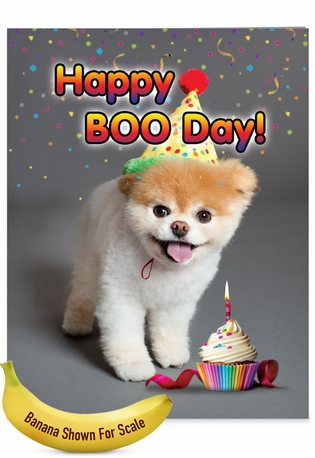 Funny Birthday Jumbo Paper Card By Spotlight Licensing From NobleWorksCards.com - Happy Boo-day