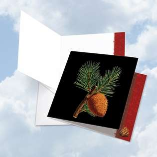 Creative Happy Holidays Jumbo Square-Top Greeting Card From NobleWorksCards.com - Black Pine