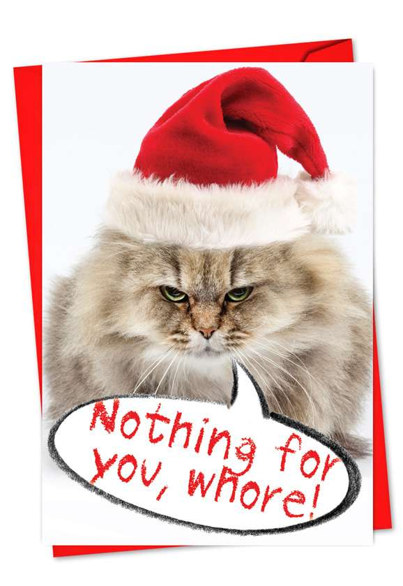 Nothing For You Whore: Hysterical Christmas Paper Greeting Card