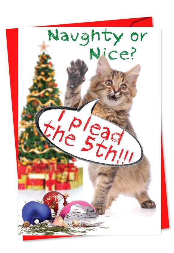 Take the 5th: Funny Christmas Printed Greeting Card