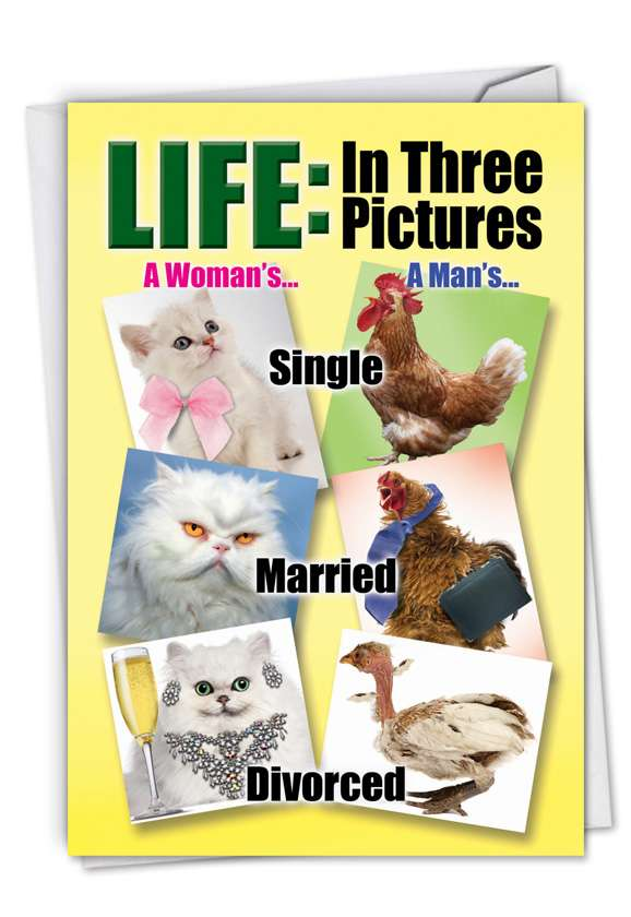 3 Life Stages: Funny Congratulations Printed Greeting Card