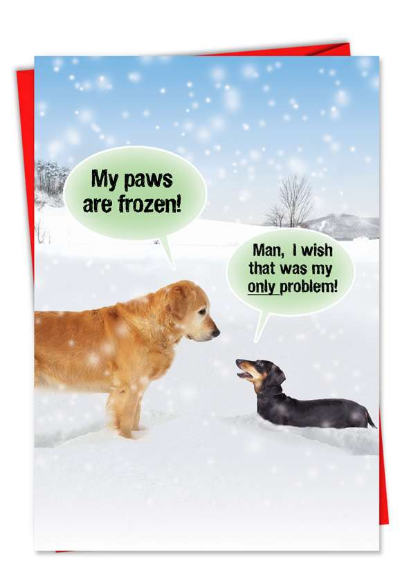 My Paws Are Frozen: Humorous Christmas Paper Card