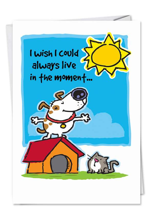 Live in the Moment: Humorous Birthday Paper Card