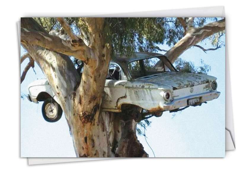 Drive Me Up A Tree: Hilarious Friendship Printed Greeting Card