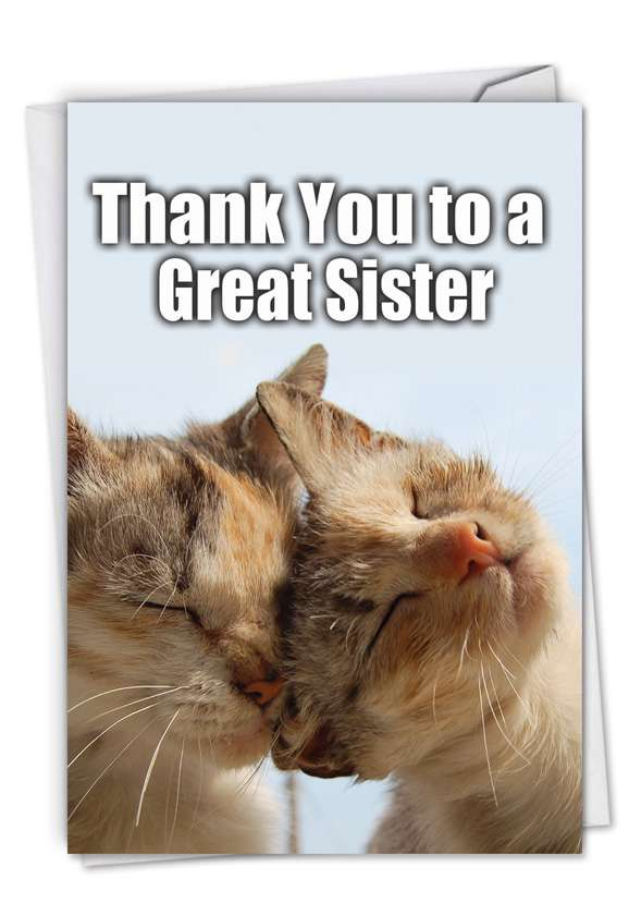 Thank You to a Great Sister: Hysterical Thank You Greeting Card
