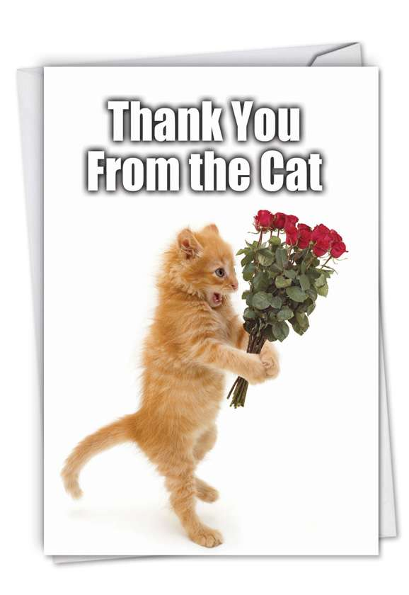 Thank You from the Cat: Hilarious Thank You Greeting Card