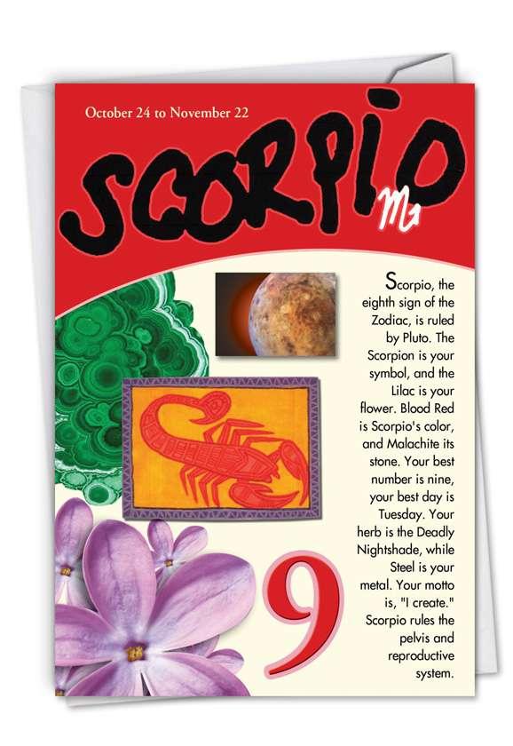 Scorpio: Hilarious Birthday Printed Card