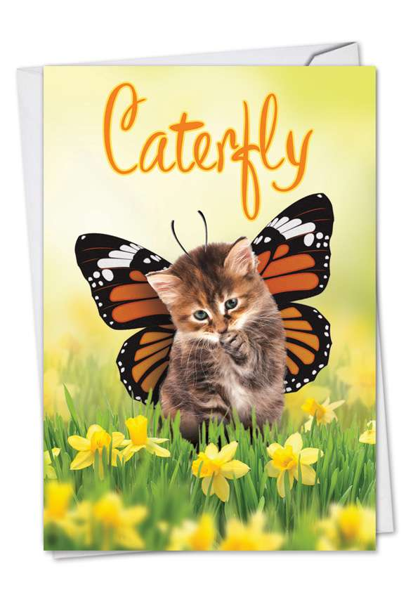 Caterfly: Funny Birthday Paper Greeting Card