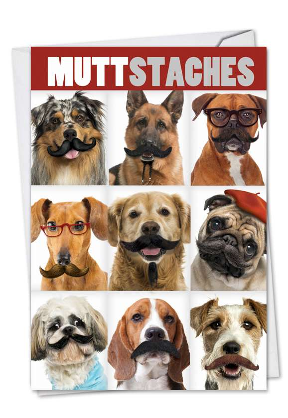 Muttstaches: Humorous Birthday Printed Greeting Card
