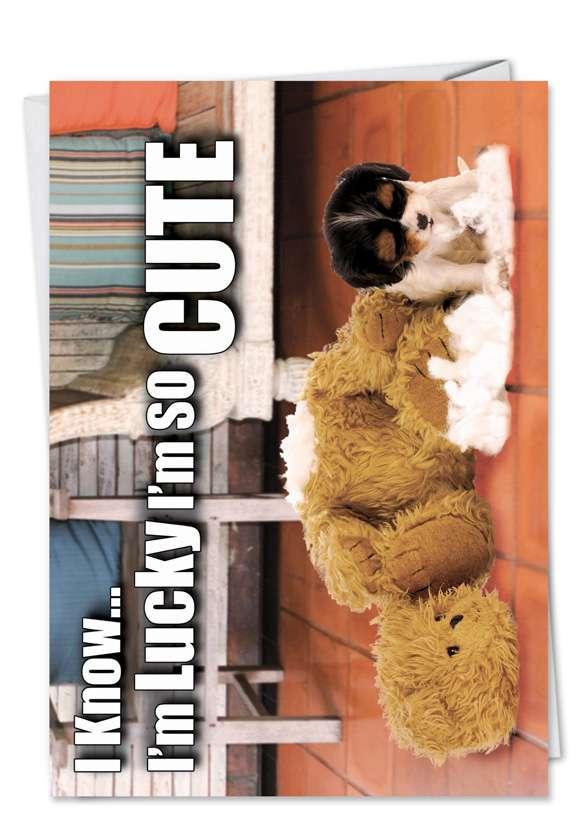Lucky So Cute: Humorous Birthday Printed Card
