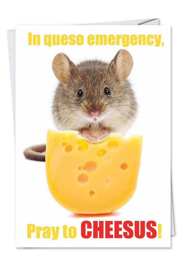 Queso Emergency: Hysterical Birthday Greeting Card
