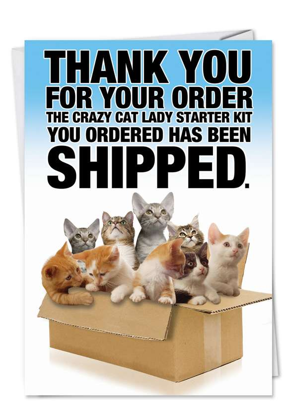 Crazy Cat Lady Starter Kit: Humorous Friendship Printed Card