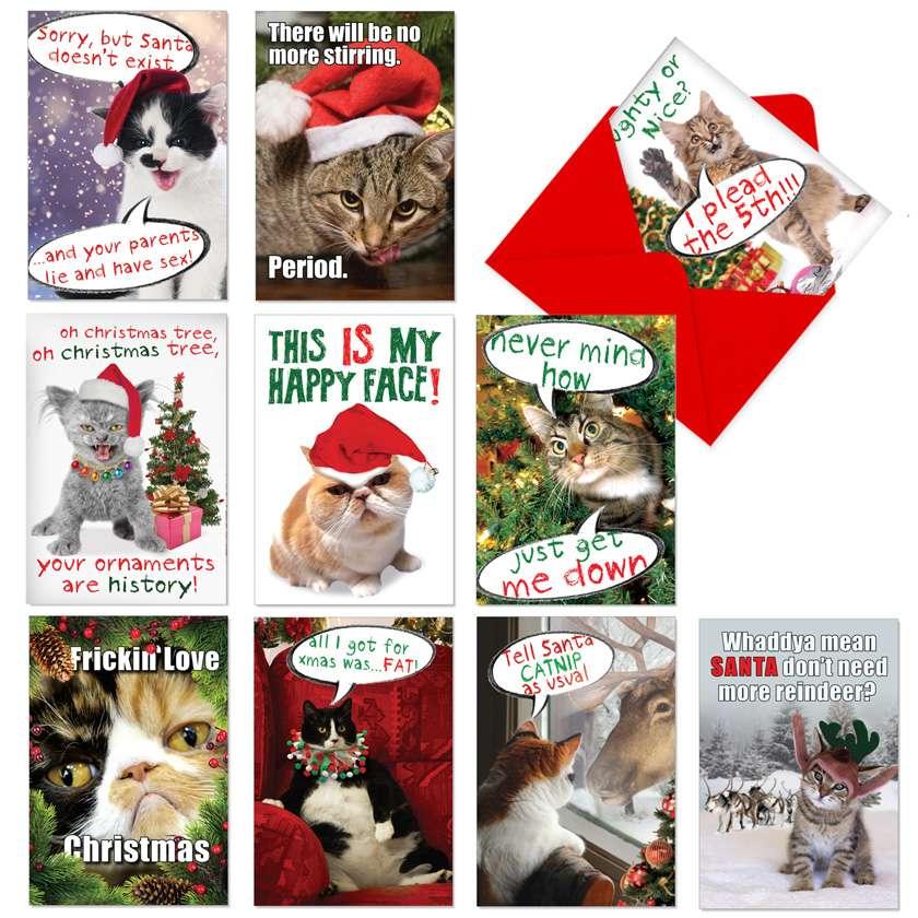 Cat-Mass Cards: Hilarious Christmas Assorted Set of 10 Cards