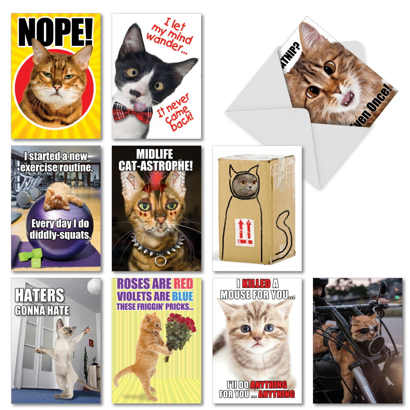 PetiGreet Cats: Humorous Birthday Mixed Set of 10 Cards