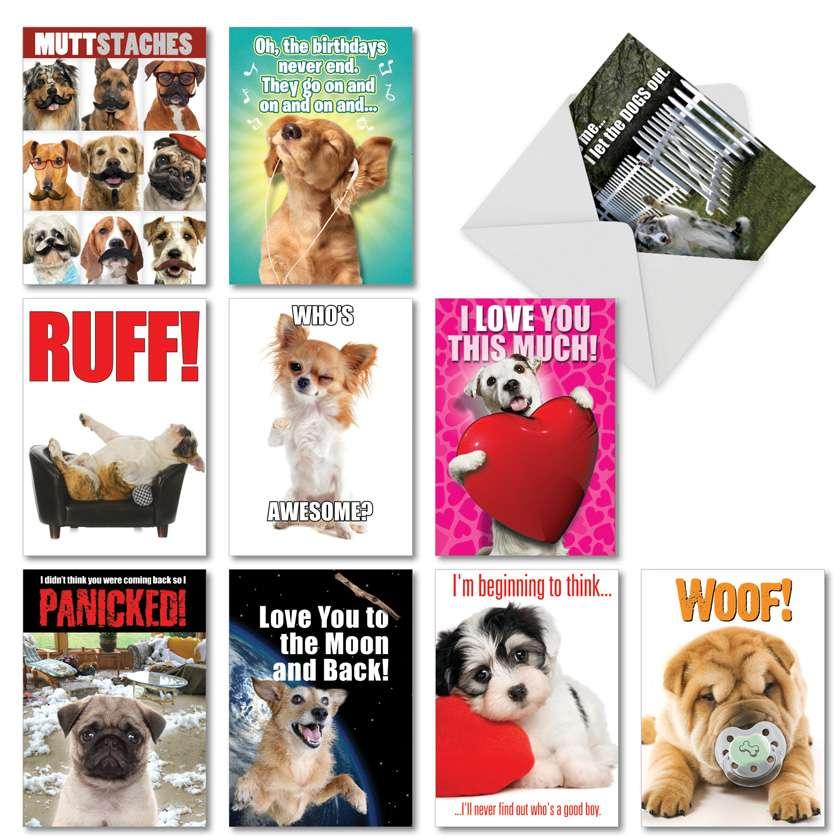 PetiGreet Dogs: Hilarious Birthday Mixed Set of 10 Cards