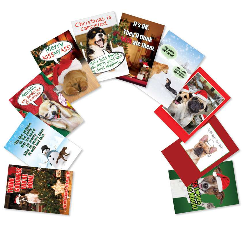 PetiGtreet: Frozen Paws: Stylish Christmas Mixed Set of 10 Cards
