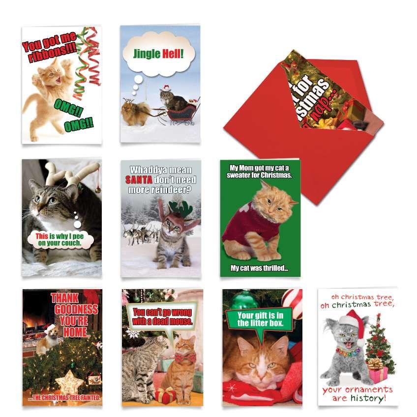PetiGreet Cats Christmas: Funny Christmas Mixed Set of 10 Cards