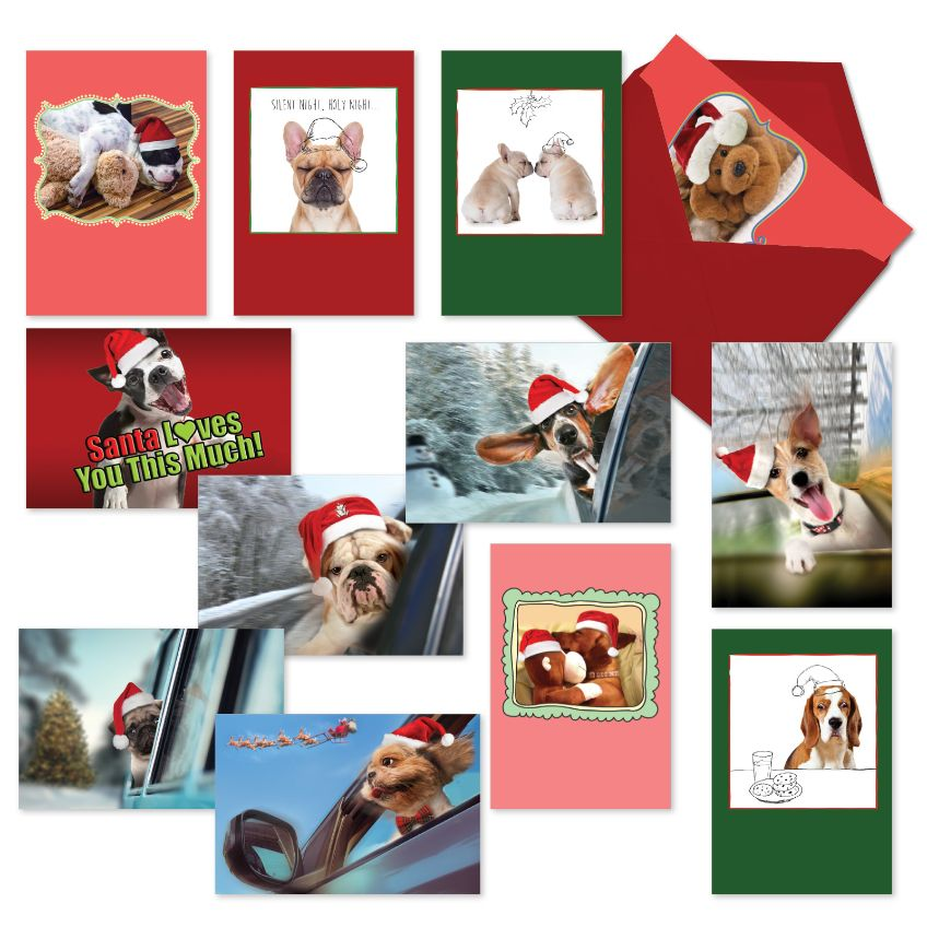 Puppy Holidays: Creative Christmas Assorted Set of 12 Cards