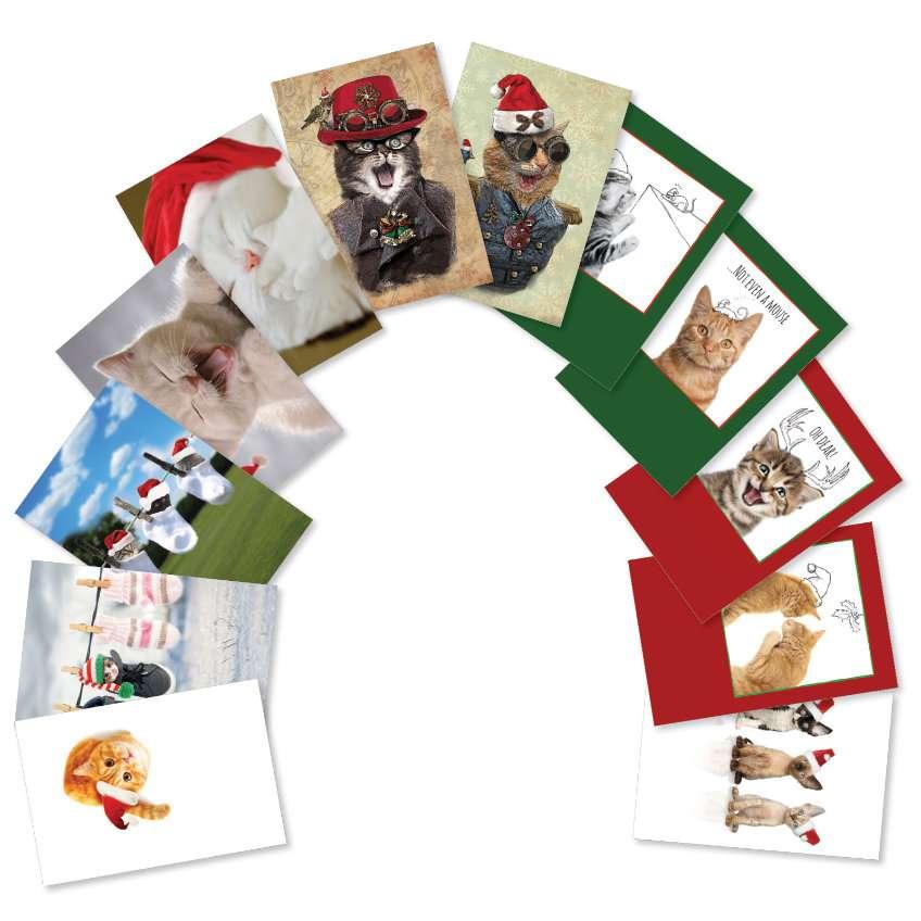 Merry Catsmas: Creative Christmas Assorted Set of 12 Cards