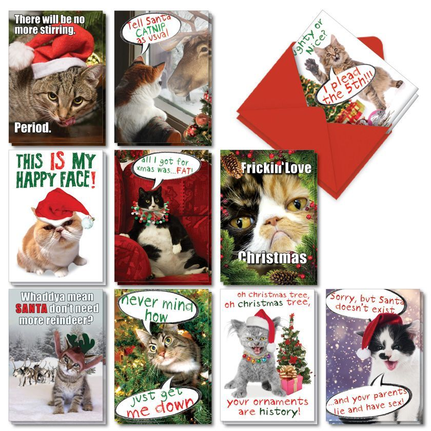 Cat-Mass Cards: Hilarious Merry Christmas Mixed Set of 20 Cards