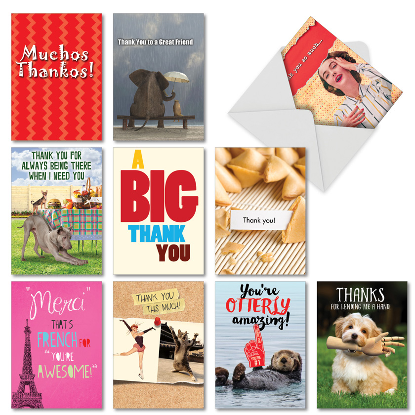 Many Thanks: Humorous Thank You Assortment of 10 Cards